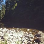 The river.
